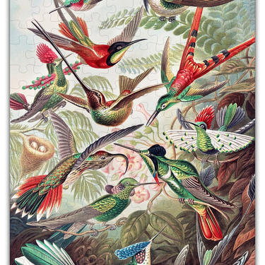 Haeckels Hummingbirds Puzzle #6730 - Wooden Jigsaw Puzzle by GreenTreeJewelry
