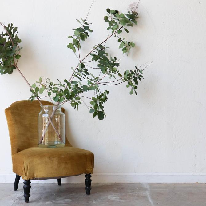 Vintage Velvet Slipper Chair