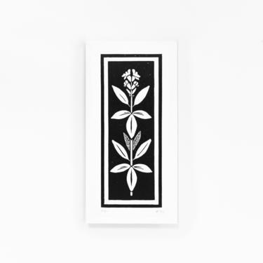 Sage | Herb Print