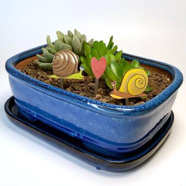 Fancy Plants Snail Love Diorama Kit
