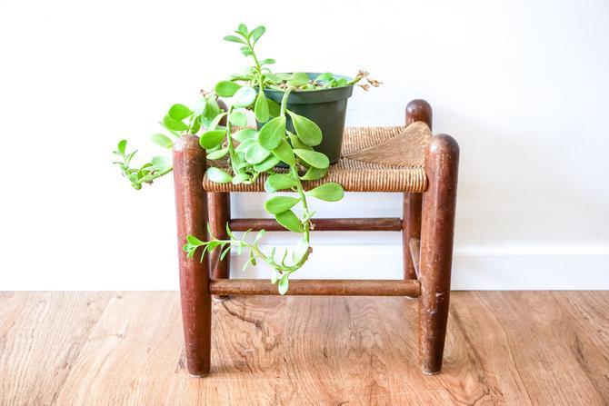 Vintage Primitive Woven Bench With Wood Frame by PortlandRevibe