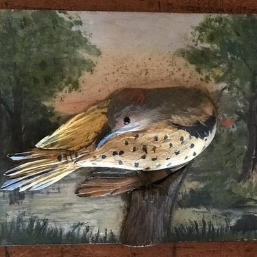 Flicker Bird Carving