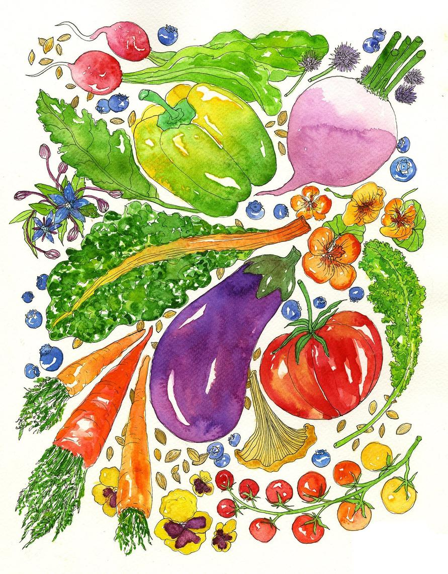 Veggie Bounty Watercolor Art Print From Marcella Kriebel