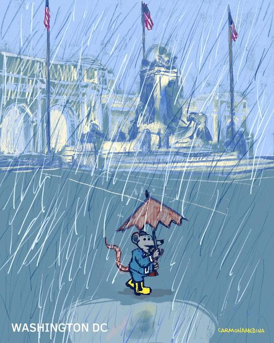Union Station under the rain [#118]
