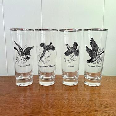 Set of 4 Vintage Mid Century Game Bird Highball Beer Pilsner Glasses; Wild Birds Geese Pheasant Silver Rim Glasses,MCM Barware by BlackcurrantPreserve