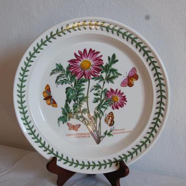 "Vtg Portmeirion Botanic Garden 1818, Susan Williams-Ellis, Flowered Chrysanthemum 10.25"" Dinner Plate 1972 ~ Made in England ~ Excellent by YesterdayAndTomorrow"