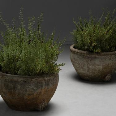 Terracotta & Cement Planters