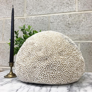 Vintage Natural Brain Coral Retro 1970s Large Size + White + Cream + Beach + Shore + Sculpted Ocean Rock + Fossil + Home Accent and Decor by RetrospectVintage215