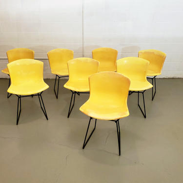 Mid Century Set of Eight Harry Bertoia for Knoll Fiberglass Shell Chairs by ProRefineFurnishings