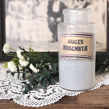 """1900s Apothecary Jar """"Nuces Moschatae"""" by CollectedATX"""