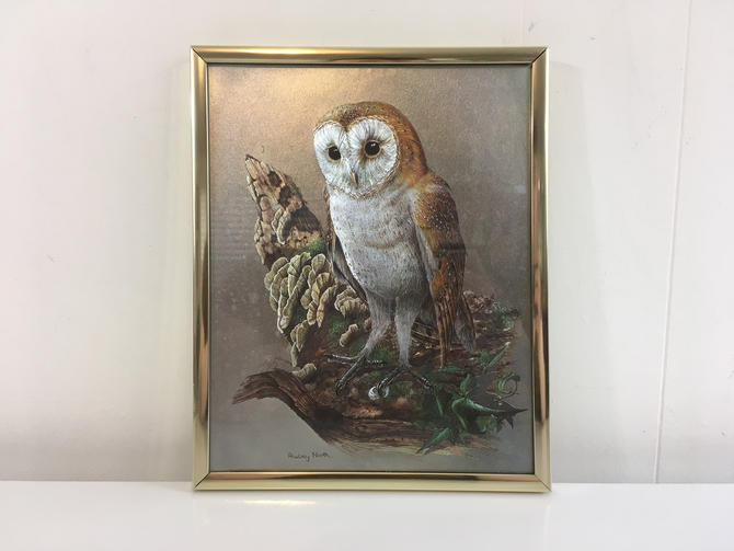Vintage Owl Iridescent Color Print Framed Optical Print Audrey North Metallic Etched Owl Bird Brown Owl Picture Print Rustic Wall Decor by CheckEngineVintage
