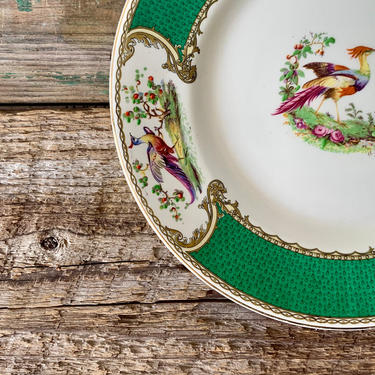 Vintage Chelsea Myott Bird Green Plate   Bird Dish   Dinner Plate   Antique Plate   Staffordshire China by PiccadillyPrairie