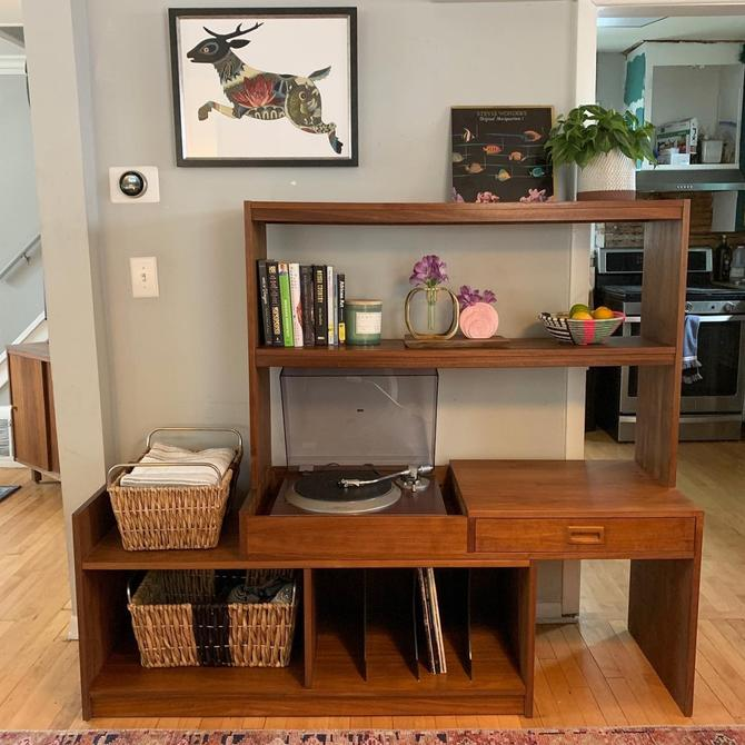 Expandable Wall Shelf / Record Cabinet