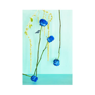 Blue Monday: Blue Roses, Floral Photo, Modern Art, Wall Hanging, Abstract Art, Decorative, Fine Art, Abstract Floral by DesireePfeifferPhoto