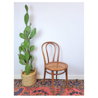 Vintage Bentwood Cane Chair | Classic MCM Thonet Arched Café Seat, Parlor Seating by SavageCactusCo