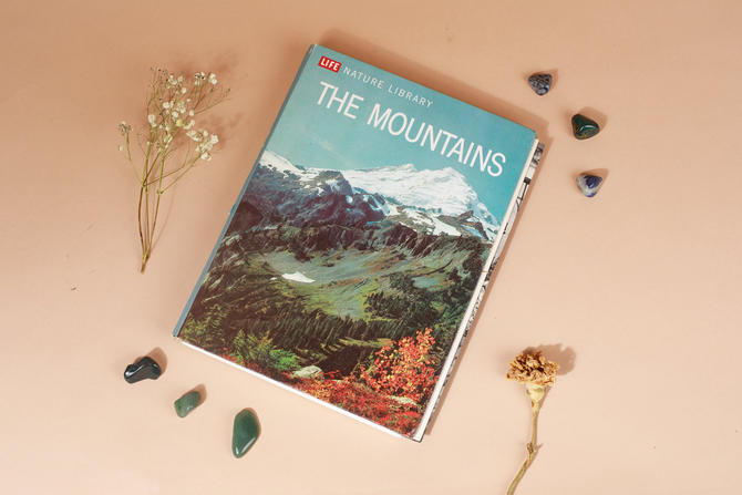 Vintage Reclaimed Repurposed Handbound Book Watercolor Sketchbook - The Mountains Life Nature Library by AppleBranchesVintage