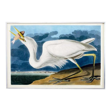 John James Audubon Great White Heron Plate #281 Oppenheimer Edition by ErinLaneEstate