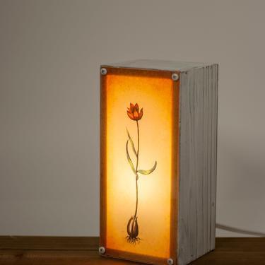 Vintage styled flower lightbox - botany - little tulip - lighting - living room - gardening - plants by MunstreGlow