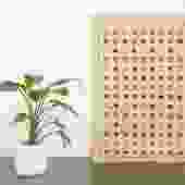 4x6 Ziegler Chobi Rug | BITA