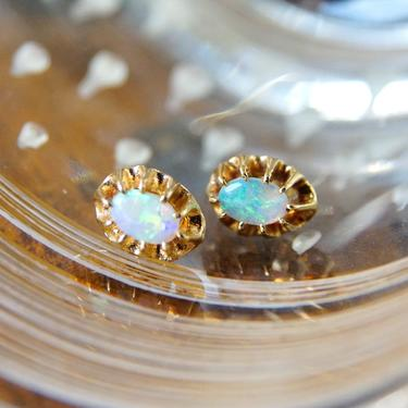 Vintage 14K Gold Prong Set Opal Stud Earrings, Gorgeous Opalescent Earrings With Gold Backings, Petite Gold Earrings, October Birthstone by shopGoodsVintage