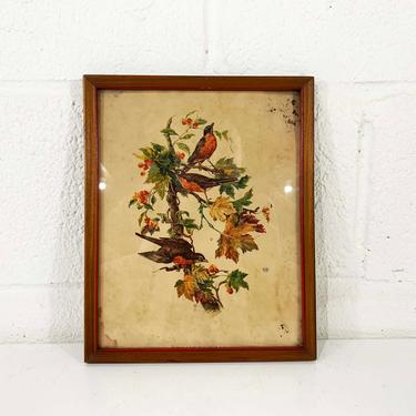 Vintage Birds Lithograph Henry B. Sandler Framed Robins Robin Wood Frame Painted Litho Print Bird Bohemian 1940s 40s Antique Boho USA NYC by CheckEngineVintage