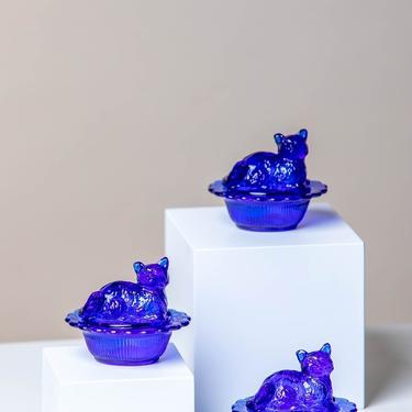 PRE-ORDER* Cobalt Blue Lidded Cat Trinket Dish by LivingColorfullyShop
