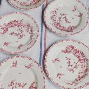 Beautiful set of 5 antique French ironstone plates with birds-SP5 by Grainsacfrenchvintag