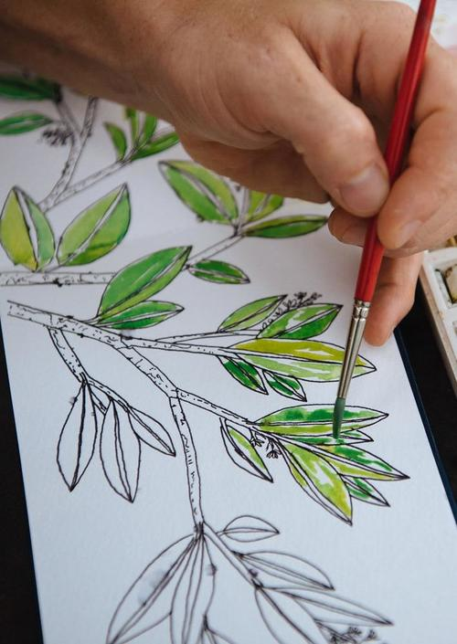 Paint Your Own Plants in Watercolor, A Virtual Workshop- March 21
