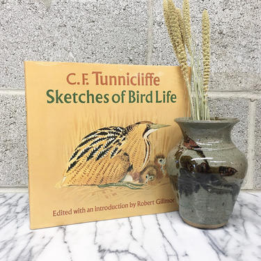 Vintage Sketches of Bird Life Book Retro 1980s C.F. Tunnicliffe + Hardcover + Colored Drawings + Illustrations + American Wilderness by RetrospectVintage215