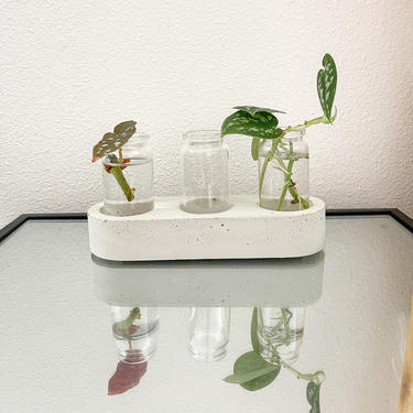 Concrete Plant Propagation Station with Glass Vials / minimalist decor / modern scandi home decor by SundayStudioOC