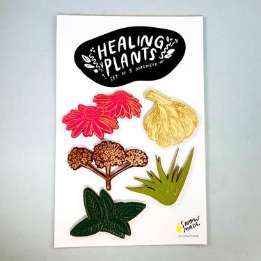 Healing Plants Magnets - Set of 5