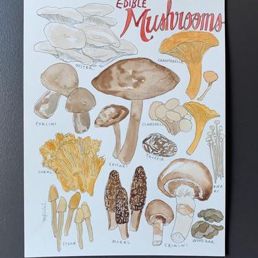 Edible Mushrooms Original Watercolor Painting