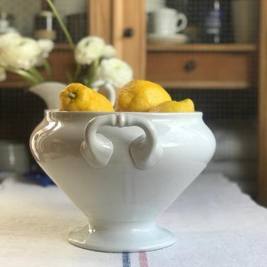 Beautiful antique Dutch ironstone soup tureen form a famous maker P Regout Maestricht by Grainsacfrenchvintag