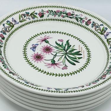 Vintage Portmeirion Variations Botanic Garden Susan Williams-Ellis 8.5/8 Salad Plates- Great Condition- 1991 by JoAnntiques