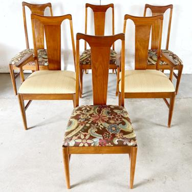 Mid-Century Modern Dining Chairs- Set of Six by secondhandstory
