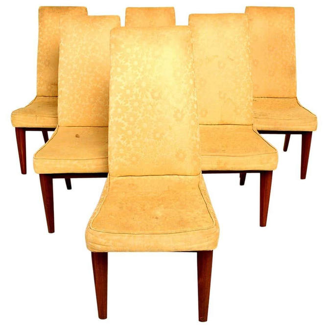 Six Dining Chairs by Maurice Bailey for Monteverdi & Young Classic Mid Century by AMBIANIC