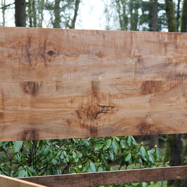 NW Panel Bed Maple by MakersWoodworks