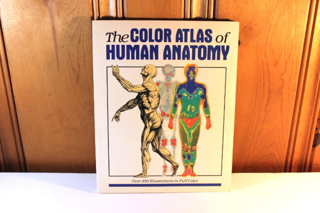 1980 Paperback Copy Of The Color Atlas Of Human Anatomy Edited By