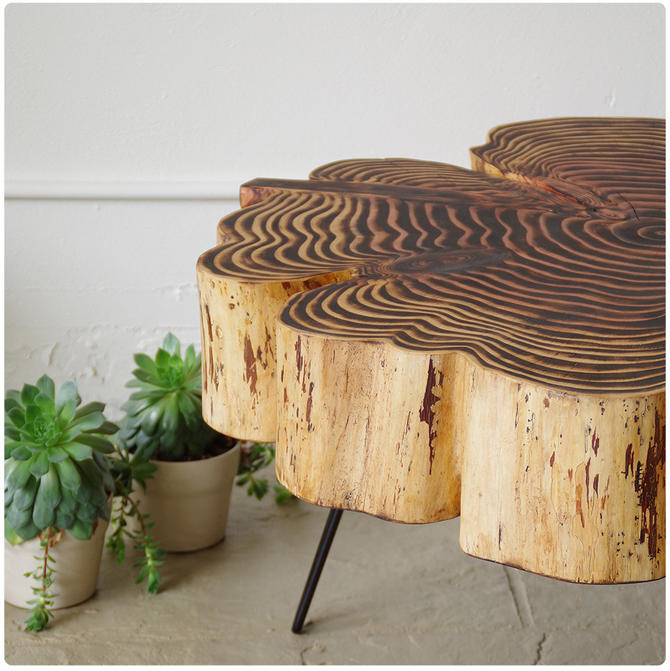 sequoia nimbus coffee table - live edge with mid century modern hairpin legs - mod - urban wood salvage by birdloft