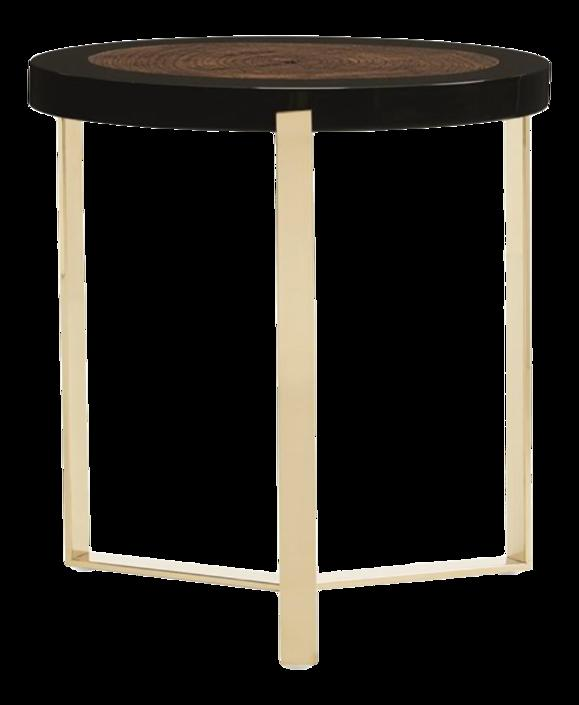 Caracole Modern Naturalist End Table