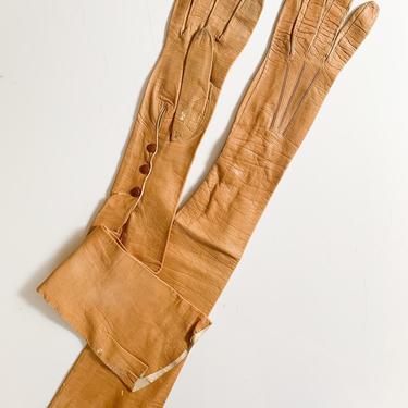 vintage/antique long caramel leather gloves by MsTips