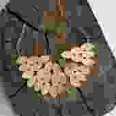 Kiketta Necklace