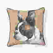 House of Boston Terrier Pillow