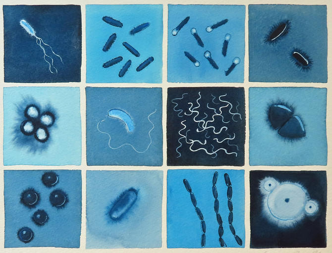 Blue Bacteria  - original watercolor painting of microbes - microbiology art by artologica