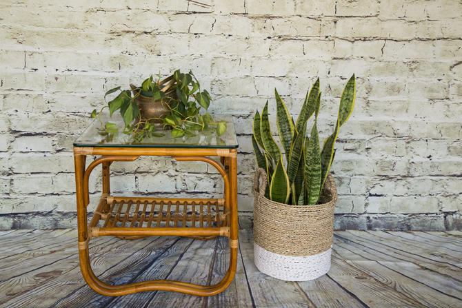 SHIPPING NOT FREE!!! Vintage Bentwood Bamboo Table/Franco Albini Style Table by WorldofWicker