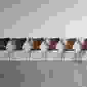 Fritz Hansen Arne Jacobsen Series 7 Bentwood Dining Chairs (Set of 6)