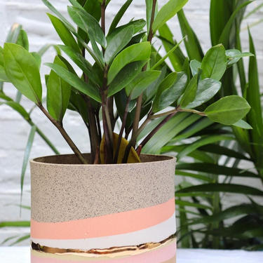 Ready to Ship! OLA Pot in Warm Pastels cache pot/ no drainage hole by GabrielleSilverlight