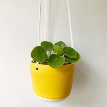 No drainage hole Mustard Yellow Handmade Porcelain Ceramic Hanging Planter by KatieMMudd