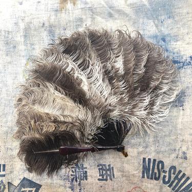 20s ostrich feather hand fan / vintage 1920s flapper tortoise handle fan antique Gatsby by ritualvintage