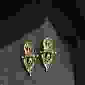 Brass Electra Stud Earrings